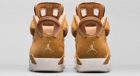 Air Jordan 6 Wheat Golden Harvest 384664-705 03