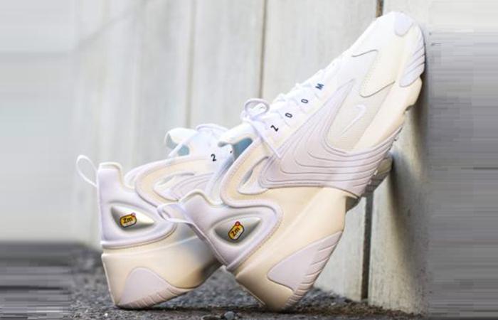 Nike Zoom Grey AO0269-100