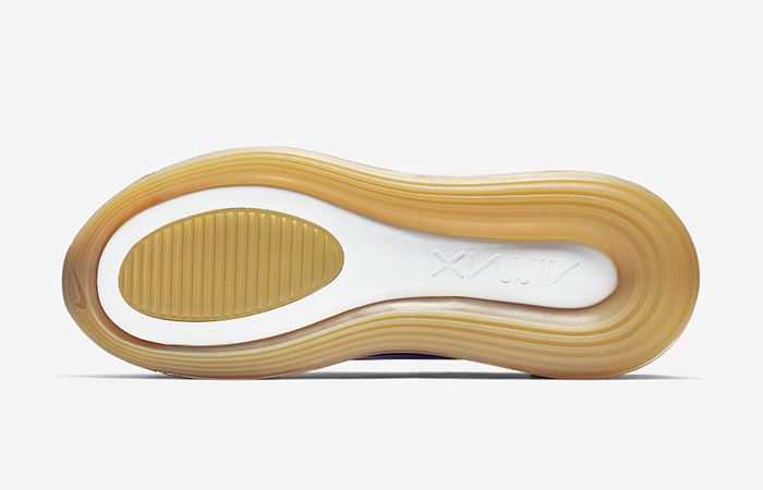 Nike Air Max Desert AO2924-700