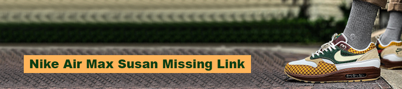 Nike Air Max Susan Missing Link