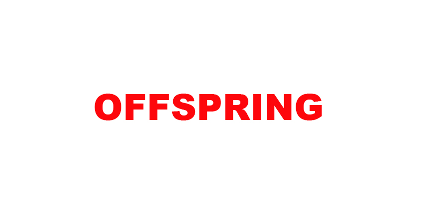 Offspring Sale Live Upto 50% Off 02