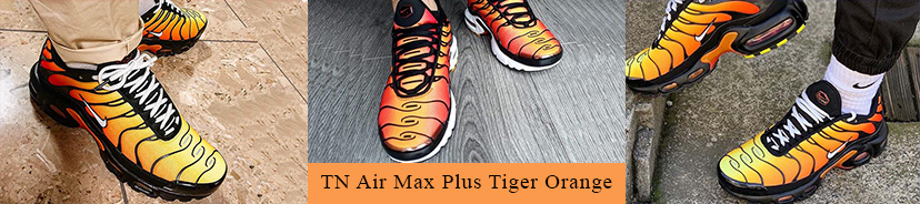 Nike TN Air Max Plus Tiger Orange