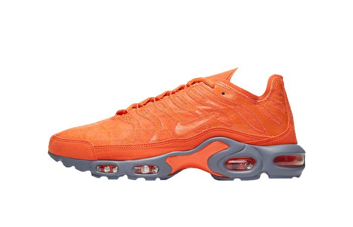 Nike TN Air Max Plus Grey Orange CD0882-800 01