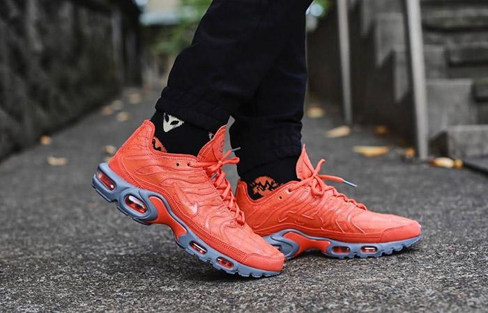 Nike TN Air Max Plus Grey Orange CD0882-800 on foot 01
