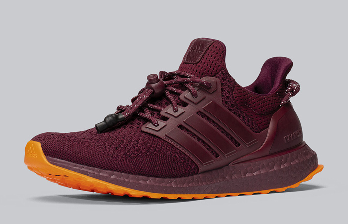 Beyonce Ivy Park adidas Ultra Boost Maroon FX3163 02