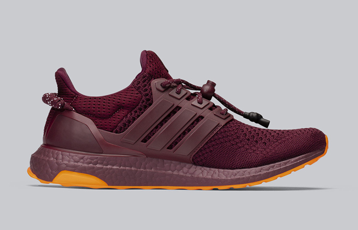 Beyonce Ivy Park adidas Ultra Boost Maroon FX3163 03