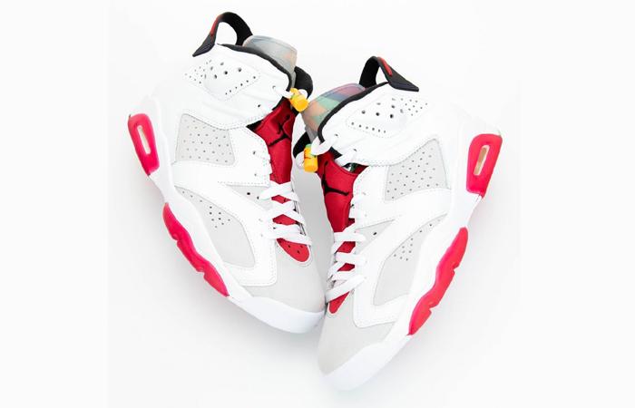 Nike Air Jordan 6 Hare 04