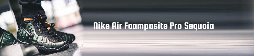 Nike Air Foamposite Pro Sequoia